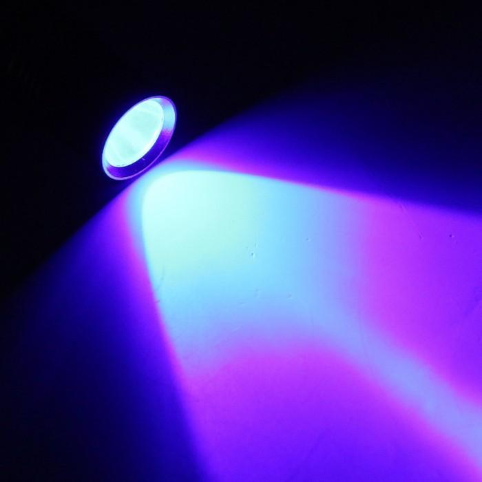 ценников фотография с эффектом ультрафиолет птиц все для